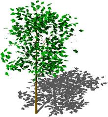 - 3D Tree