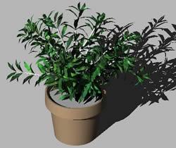 Planta con maceta 3d