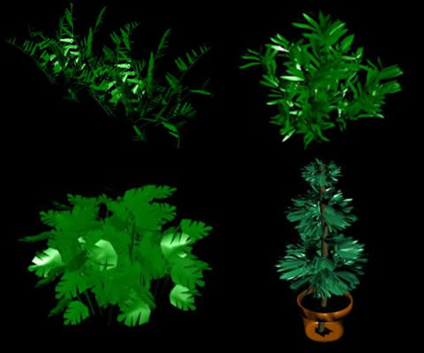 nice plants in 3d max
