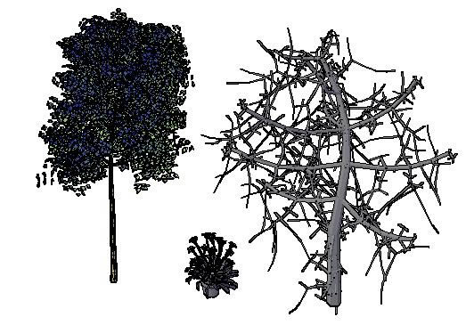 trees in 3d in autocad