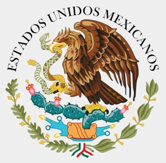 Mexican National Shield