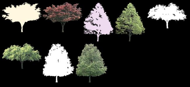 Trees collection 7 TIF - opacity