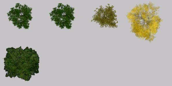 Trees for photoshop