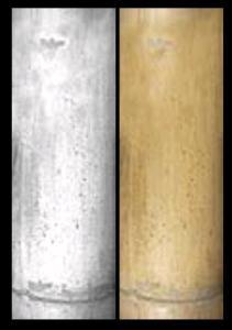 Textura tronco de Bambu