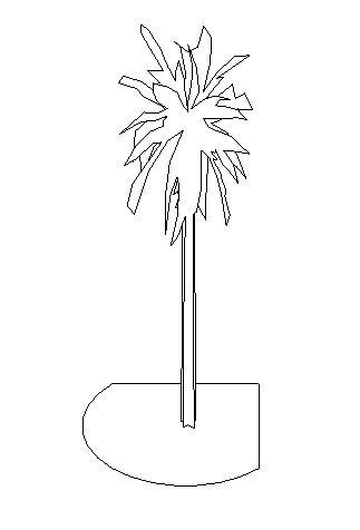 Palm Revit