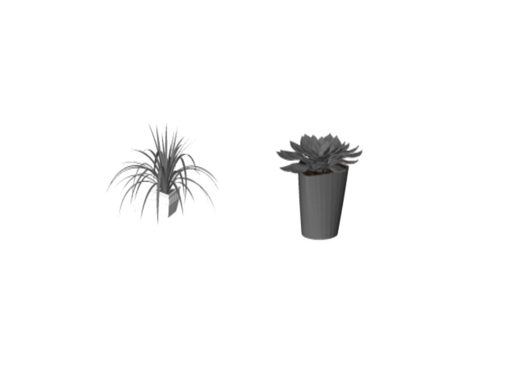 Macetas de flores y plantas