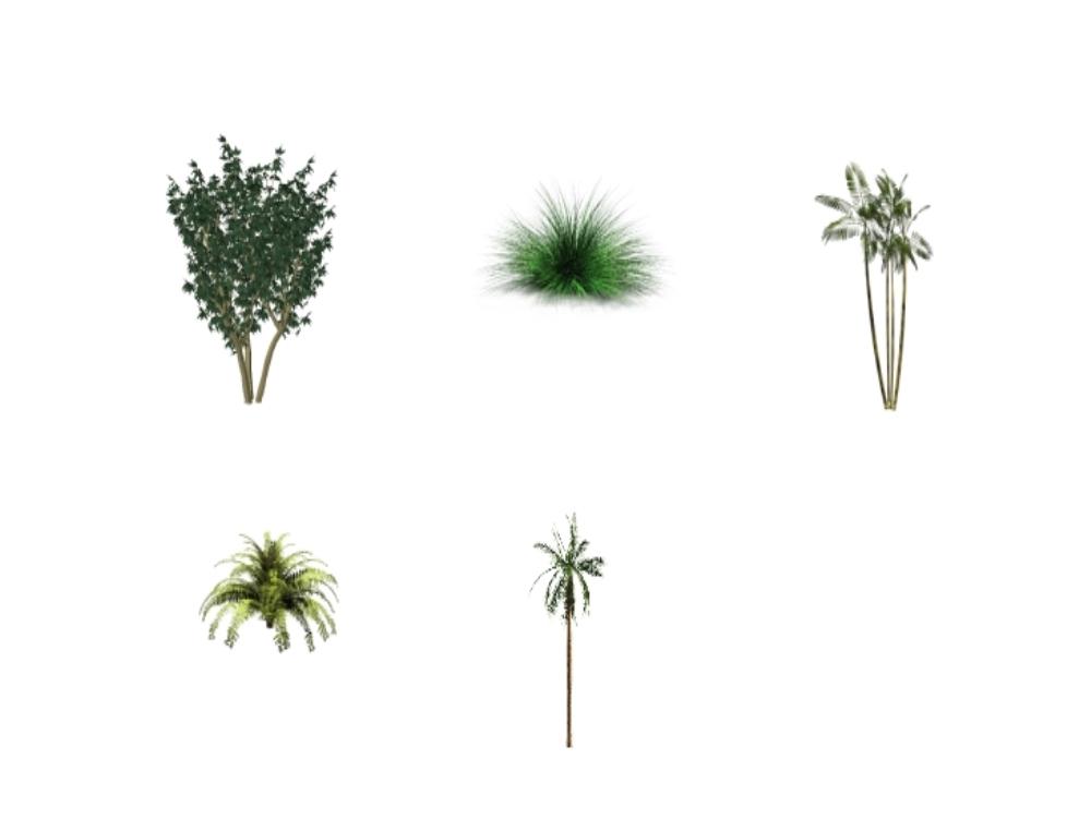 Vegetación para diferentes proyectos en revit