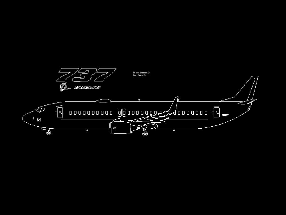 Boeing 737-700 plane