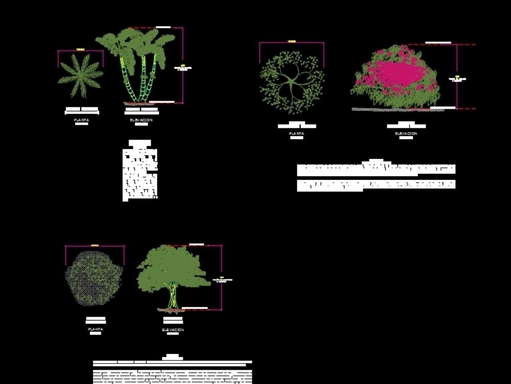 Arboles y vegetacion para espacios públicos