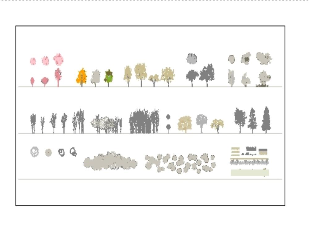 Vegetación a línea de diferentes especies