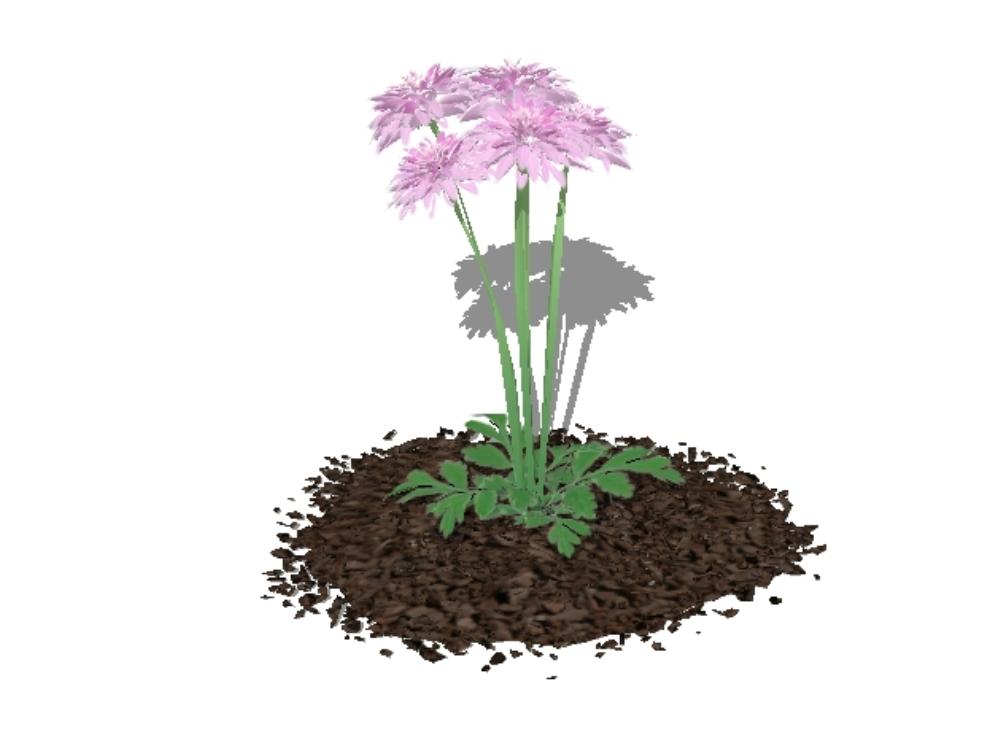 Plants for 3d gardens - flowers