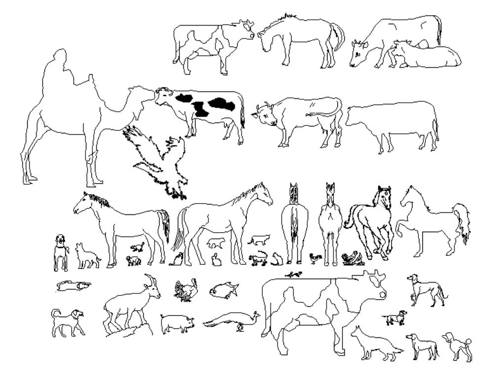 Farm animals; birds ; pigs; horses