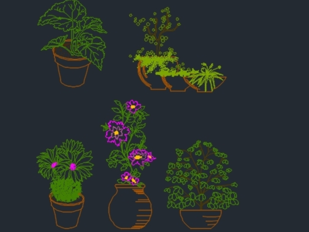 Plants for setting