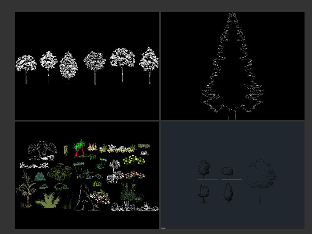 Vegetación - árboles