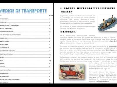 Transportation report