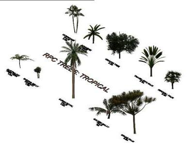 3D TROPICAL TREES