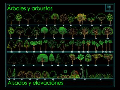 Elevation of trees and shrubs