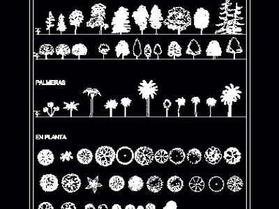 Catalog of trees