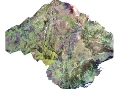 Orthophoto in PDF of 100 hectarias cusco